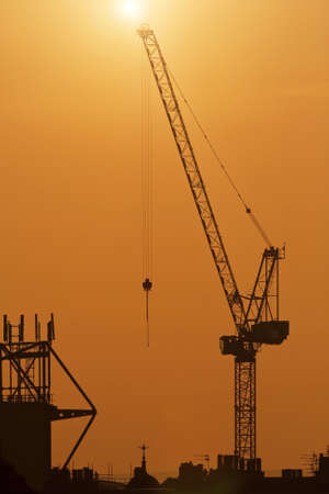 Cranes on a sunset background Stock Photo - 13555517