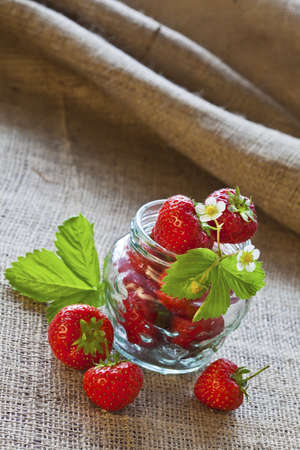 Ripe red strawberries in glass jar and leaves on sackcloth and sugar closeup Stock Photo - 14627200