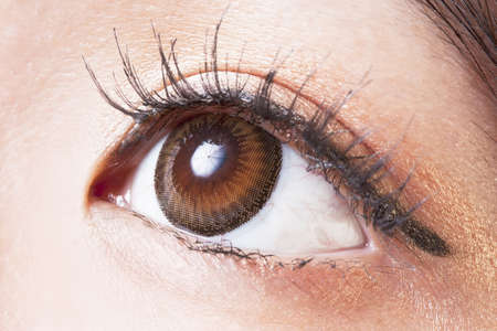 Closeup of Female eye with brown contact lenses macro Stock Photo - 14999574