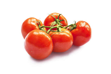 Closeup of vine tomatoes isolated on white background. Selective focus Stock Photo - 14999569