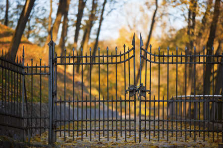 protected plant: Shut iron spiked gates with blurred autumn trees on the background Stock Photo