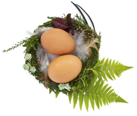 Easter nest with two eggs and feathers photo
