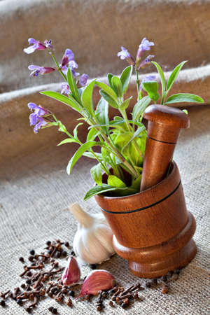 Fresh sage in wooden mortar, garlic, pepper and cloves on sackcloth closeup Stock Photo - 17172147
