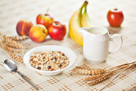 Healthy eating breakfast low calories bowl of swiss muesli with fruits and milk photo