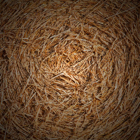 Closeup of  bales of hay texture spiral as a rural background concept. Square crop with dark vignetting effect photo