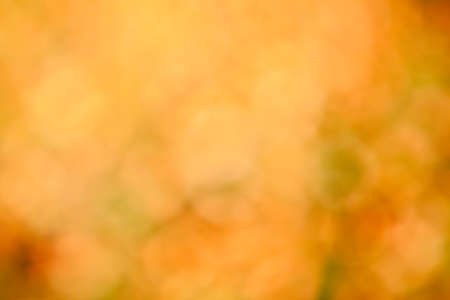 Defocused abstract bokeh of orange autumn foliage for use at graphic design photo
