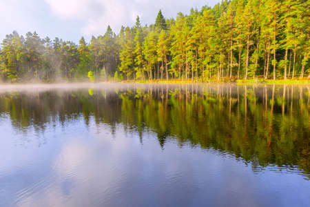Beautiful landscape scene with pine forest reflected in calm lake hazy water in the morning. Cairngorms National Park, Scotland.