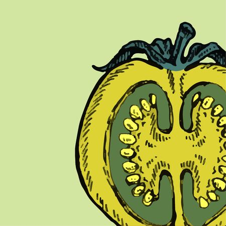 Set of hand drawn tomato. Organic eco food.