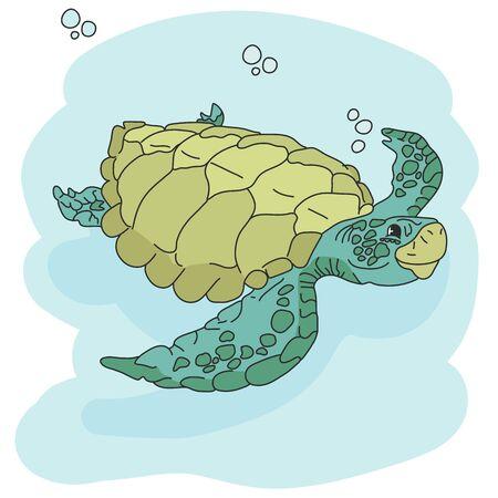 Sea turtle. Hand drawn vector illustration. turtle isolated on white background. Ilustracja