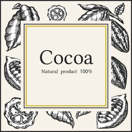Cocoa bean tree design template. Engraved style illustration. Chocolate cocoa beans. Vector illustration.