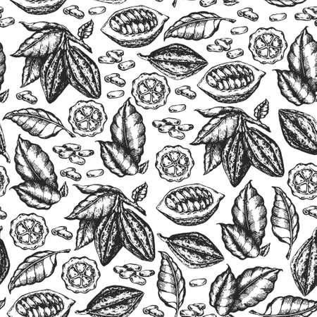 Cocoa beans illustration. Engraved style illustration. Chocolate cocoa beans. Vector seamless illustration