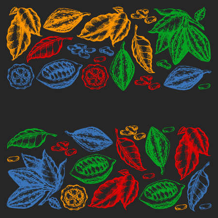 Colorful cocoa beans illustration on black background. Engraved style illustration. Chocolate cocoa beans. Vector pattern illustration