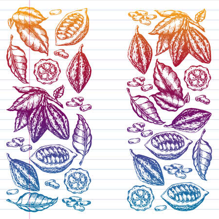 Colorful cocoa beans illustration on white background. Engraved style illustration. Chocolate cocoa beans. Vector pattern illustration