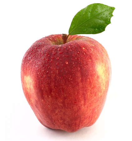 wet red apple photo