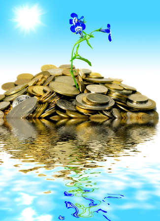 island of coins photo