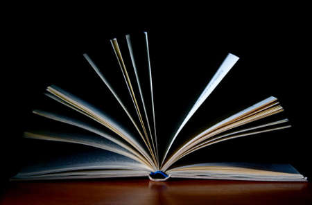 open book Stock Photo - 5006299