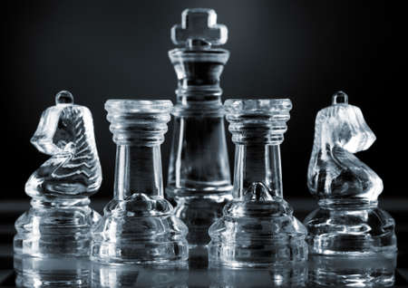 the rook: chess piece