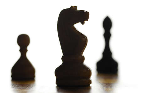 wooden chess pieces photo
