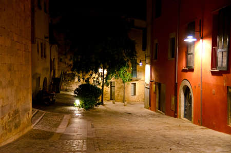 nocturnal: nocturnal Girona