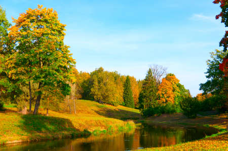 beautiful autumn park at evening before sunset Stock Photo - 13642305