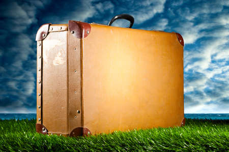 suitcase on grass photo