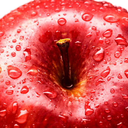 wet red delicious apple  photo