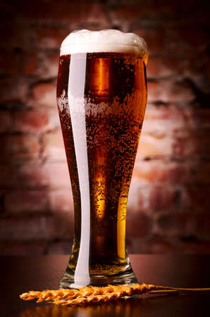 glass of lager Stock Photo - 18023285
