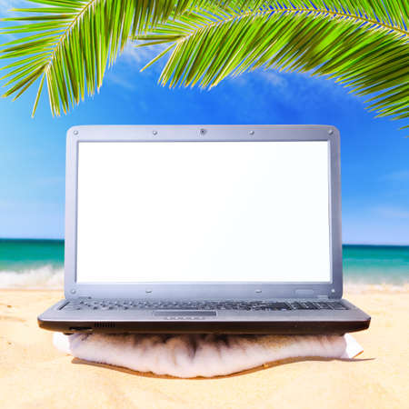 modern laptop under palm tree photo