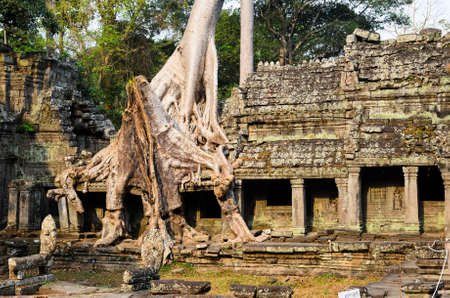 templo: Preah Khan, parte de Khmer Angkor complejo del templo, popular entre los turistas antiguo punto de referencia y lugar de culto en el sudeste asiático. Siem Reap, Camboya. Foto de archivo