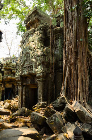 siem reap: Ta Prohm, part of Khmer Angkor temple complex, popular among tourists ancient landmark and place of worship in Southeast Asia. Siem Reap, Cambodia. Stock Photo