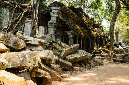Ta Prohm, part of Khmer Angkor temple complex, popular among tourists ancient landmark and place of worship in Southeast Asia. Siem Reap, Cambodia. Stock Photo