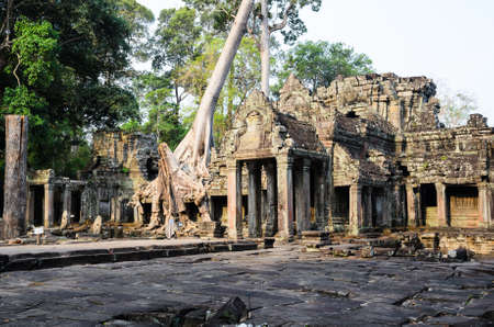 banian tree: Preah Khan, part of Khmer Angkor temple complex, popular among tourists ancient lanmark and place of worship in Southeast Asia. Siem Reap, Cambodia.