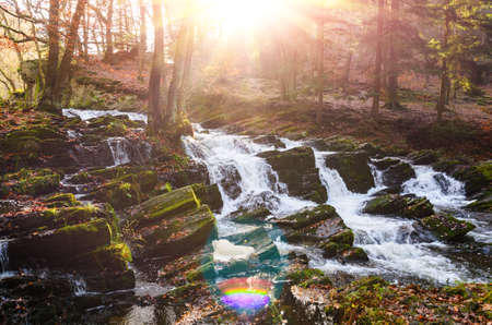 waterfall in misty autumn forest at sunset, Harz National Park, Germany Standard-Bild - 130059165