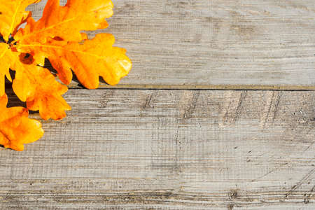 Green, yellow and red autumn leaves on a wooden table. Stock Photo - 130059237