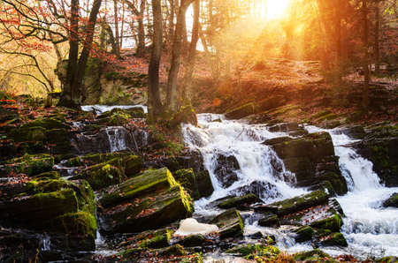 Wasserfall im nebligen Herbstwald bei Sonnenuntergang, Nationalpark Harz, Deutschland Standard-Bild - 82900937