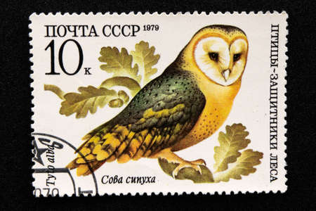 The USSR postage stamp, Series - Birds - Demonstrators of the Forest, 1979, Barn owl, Tyto alba