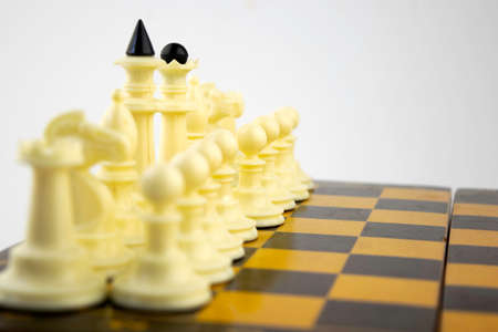white chess pieces stand on a chessboard before the start of a game, Banco de Imagens - 122730769