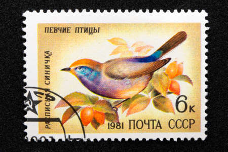 The USSR postage stamp, series - Songbirds, 1981, Painted Tit Leptopoecile sophiae
