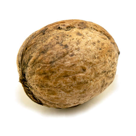 Walnut isolated on a white background. close-up Banco de Imagens