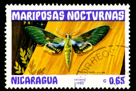 07.24.2019 Divnoe Stavropol Territory Russia Nicaragua mail stamp 1983 year Series Night butterflies mariposas nocturnas pholus lasbruscae, butterfly on a yellow board background Editorial