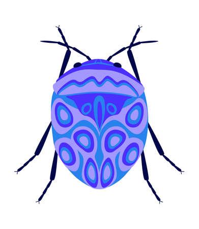 Violet flat beetle. Isolated on white background.