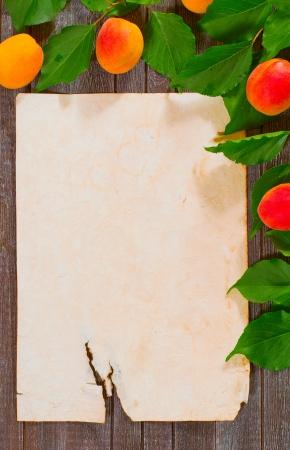 paper prescription decorated branch of apricot