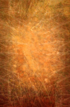 An abstract texture background in gold and copper. Stock Photo - 11980402