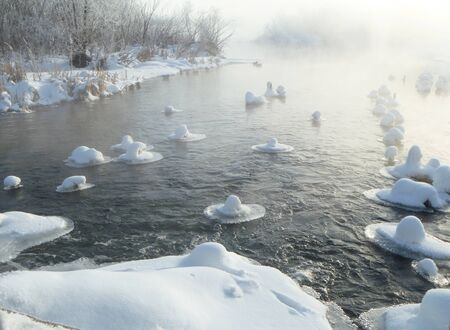Misty morning on river in winter Stock Photo - 12332399