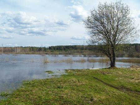 Spring flood on river photo
