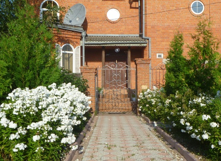 flowerses: Beautiful white flowerses beside entry in cottage