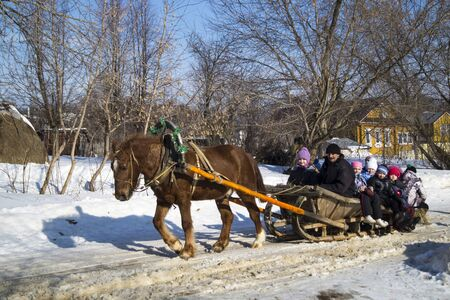 horse sleigh: The Shrovetide. Walk of the boys on vehicle with horse