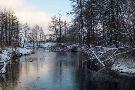 winter wood: Landscape with small river in winter wood with tree in Russia