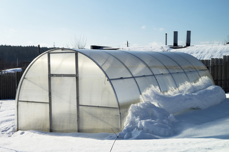 hothouse: Hothouse for plants with vegetable in garden in winter