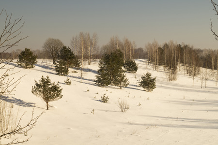 eminence: Winter landscape with small tree on background blue sky Stock Photo
